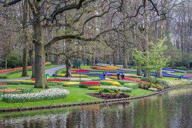 Keukenhof Gardens 800